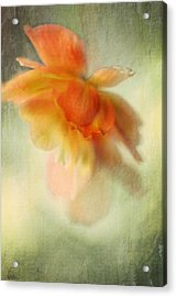 Flame Acrylic Print by Annie Snel