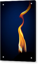 Acrylic Print featuring the pyrography Flame by Darryl Dalton