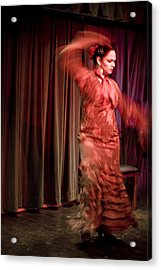 Flamenco Series 13 Acrylic Print