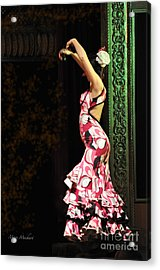 Flamenco Series #8 Acrylic Print by Mary Machare