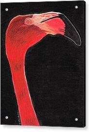 Flamingo Art By Sharon Cummings Acrylic Print