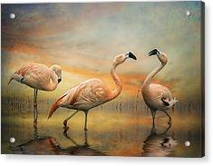 Flamingo Dusk Acrylic Print