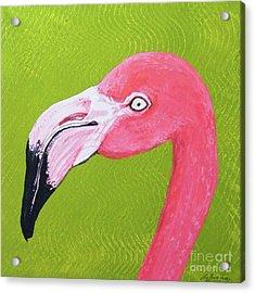 Flamingo Head Acrylic Print