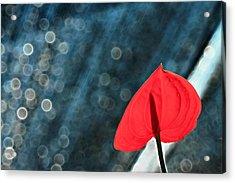 Flamingo In Love Acrylic Print by Suradej Chuephanich