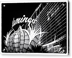 Flamingo Night View Acrylic Print by John Rizzuto