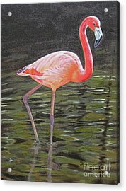 Acrylic Print featuring the painting Flamingo On Parade by Jimmie Bartlett