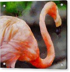 Flamingo Painting Acrylic Print