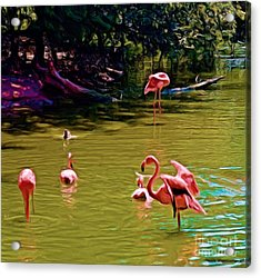 Flamingo Party Acrylic Print by Luther Fine Art