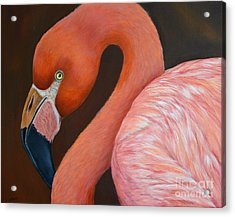 Flamingo Pretty In Pink Acrylic Print