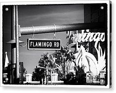 Flamingo Road Acrylic Print by John Rizzuto