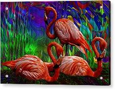 Flamingo Trio II Acrylic Print