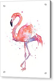 Flamingo Watercolor Acrylic Print by Olga Shvartsur