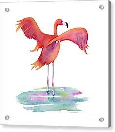 Flamingo Wings Acrylic Print