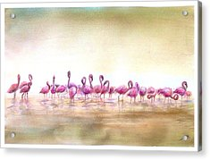 Flamingoes Land Acrylic Print