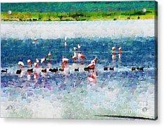 Flamingos And Ducks Painting Acrylic Print by George Fedin and Magomed Magomedagaev