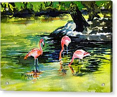 Flamingos At The St Louis Zoo Acrylic Print by Spencer Meagher