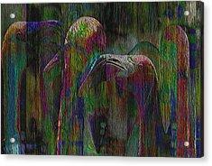 Flamingos Acrylic Print by Jack Zulli