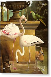 Flamingos Acrylic Print by Lizzie Riches