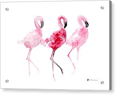Flamingos Painting Watercolor Art Print Acrylic Print by Joanna Szmerdt