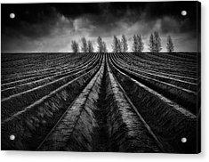 Flanders Fields IIi Acrylic Print