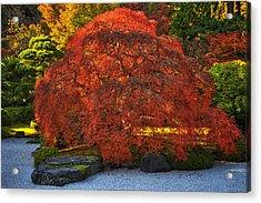 Flat Garden Maple Acrylic Print