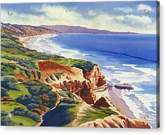 Flat Rock And Bluffs At Torrey Pines Acrylic Print by Mary Helmreich