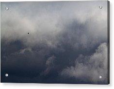 Fleeing The Storm   Acrylic Print