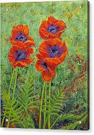 Fleurs Des Poppies Acrylic Print