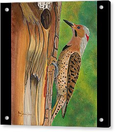 Flicker Acrylic Print by Amy Reisland-Speer