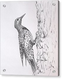Flicker Acrylic Print by James Skiles
