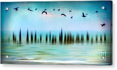 Flight - A Tranquil Moments Landscape Acrylic Print by Dan Carmichael