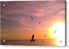 Flight Into The Light Acrylic Print