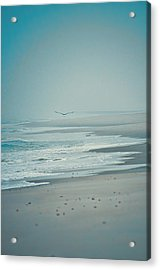 Flight Of Tranquility And Peace Acrylic Print