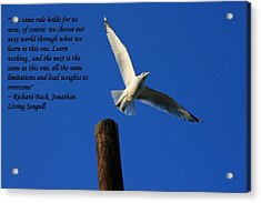 Flight To Freedom Acrylic Print