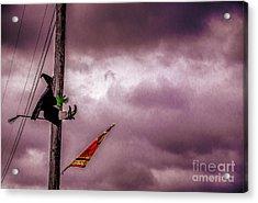 Flight Training Acrylic Print by Arne Hansen