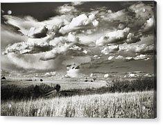 Flint Hills Prairie Acrylic Print by Thomas Bomstad