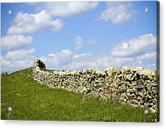 Acrylic Print featuring the photograph Flint Hills Rock Fence by Steven Bateson