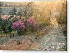 Flint Hills Spring Acrylic Print