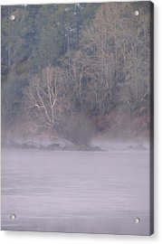 Acrylic Print featuring the pyrography Flint River 10 by Kim Pate