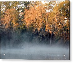 Acrylic Print featuring the photograph Flint River 14 by Kim Pate