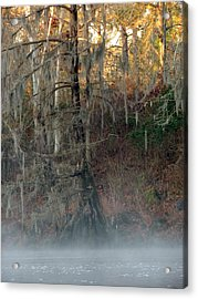 Acrylic Print featuring the photograph Flint River 15 by Kim Pate