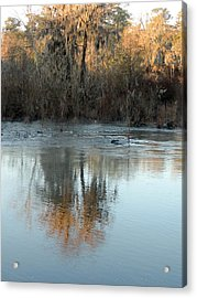 Acrylic Print featuring the photograph Flint River 17 by Kim Pate