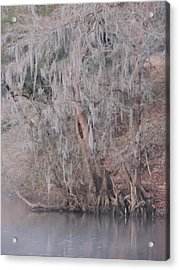 Acrylic Print featuring the photograph Flint River 2 by Kim Pate