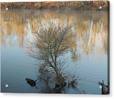 Acrylic Print featuring the photograph Flint River 24 by Kim Pate