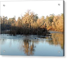 Acrylic Print featuring the photograph Flint River 27 by Kim Pate