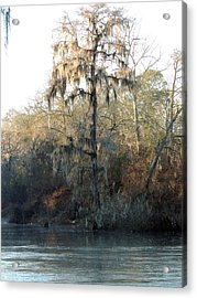 Acrylic Print featuring the photograph Flint River 30 by Kim Pate
