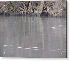 Acrylic Print featuring the photograph Flint River 6 by Kim Pate