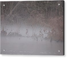 Acrylic Print featuring the photograph Flint River 7 by Kim Pate