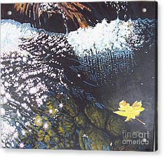 Floating By Acrylic Print by Devon Featherstone