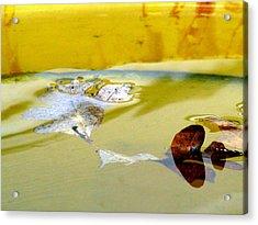 Floating In The Rain Barrel Acrylic Print